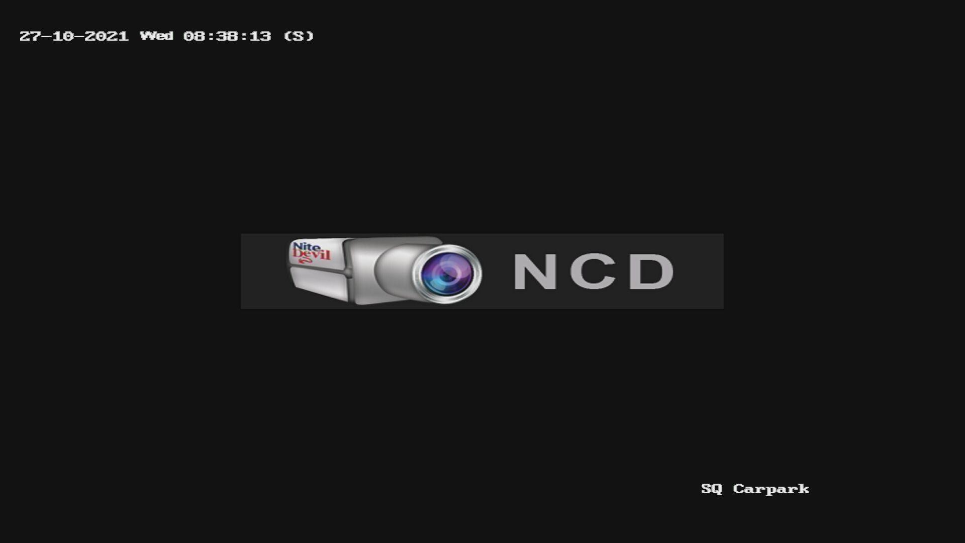 Webcam demo image